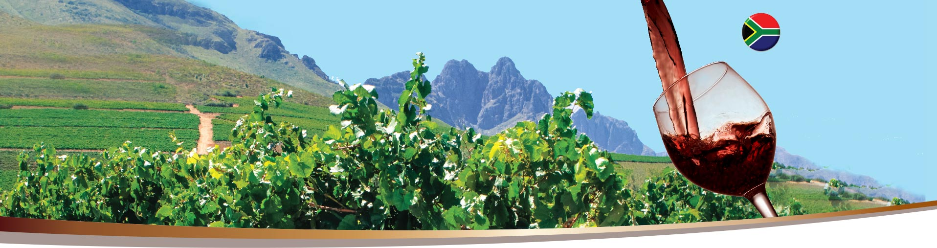 Zidela - South African Wines